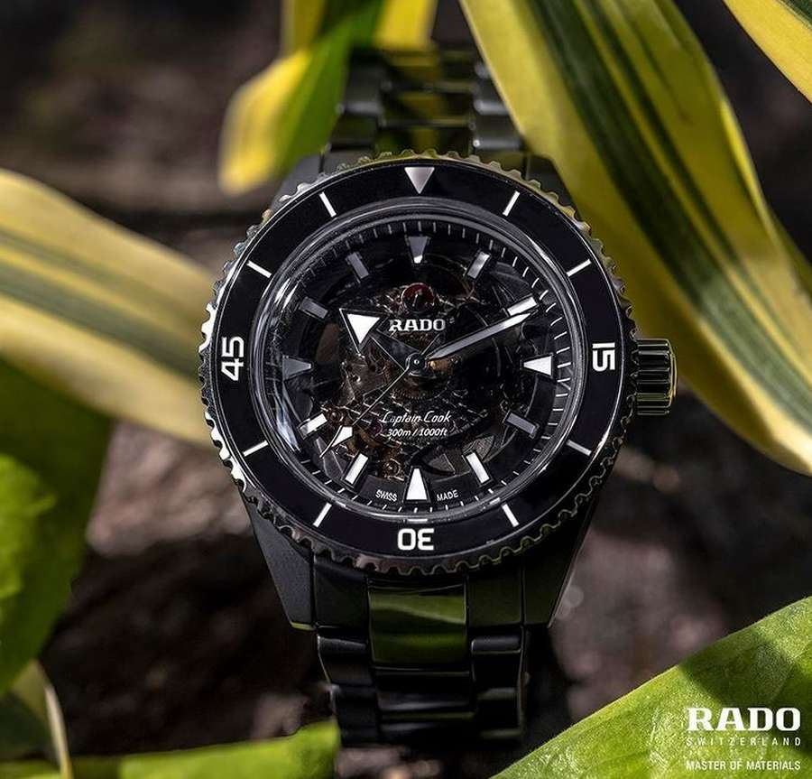 A watch on a plant Description automatically generated with low confidence