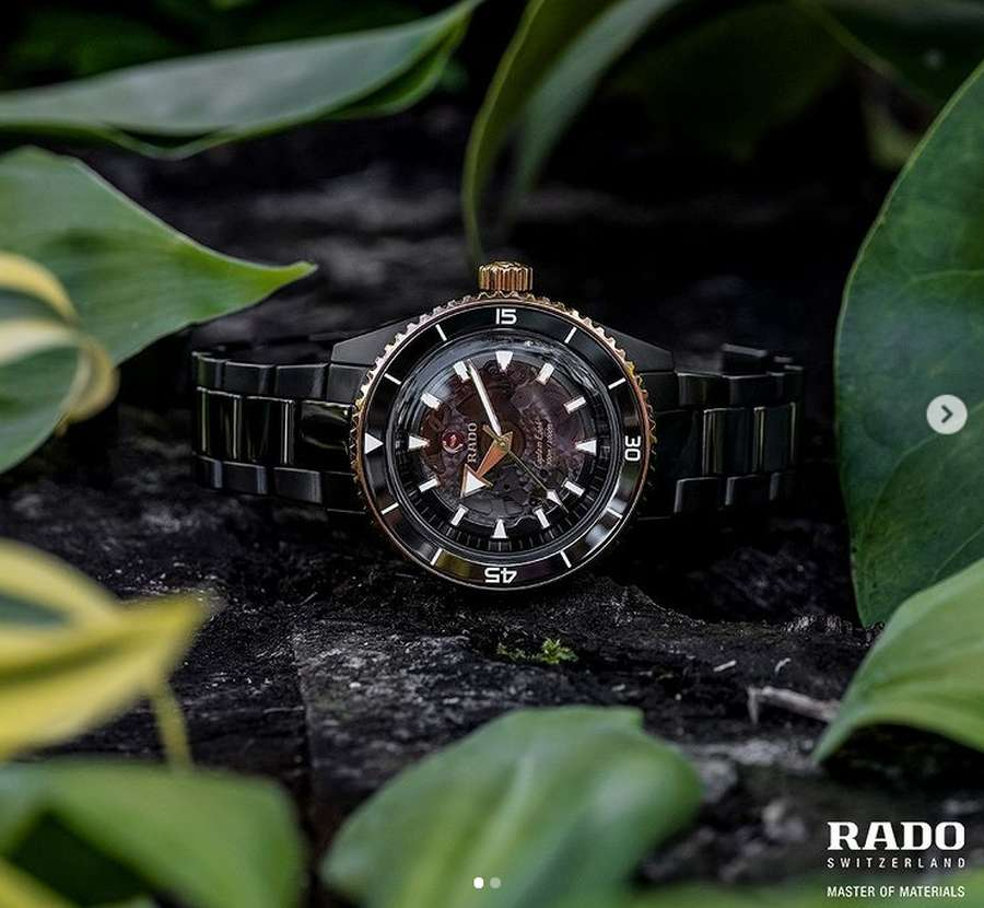 A picture containing plant, green, outdoor, watch Description automatically generated